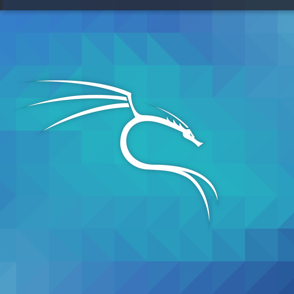 2020 Kali Linux Laptop