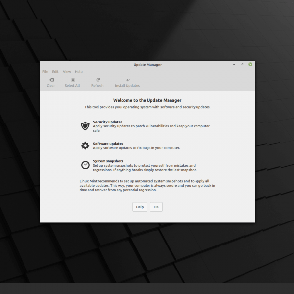 Linux Mint 20 Update Manager