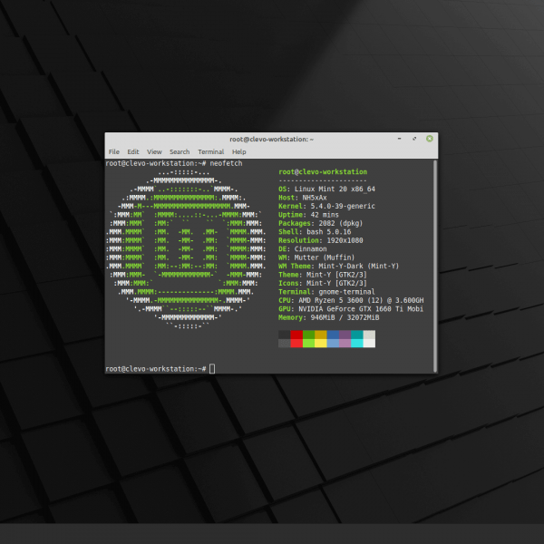 Linux Mint 20 Terminal