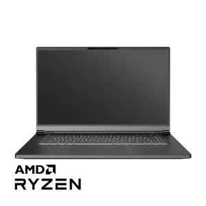 Tongfang PF5PU1G AMD Linux Laptop